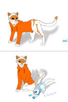 swap cats (cattale) by KaiSkelyx