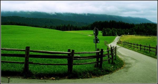 road to Alps by julia-korotchenkova