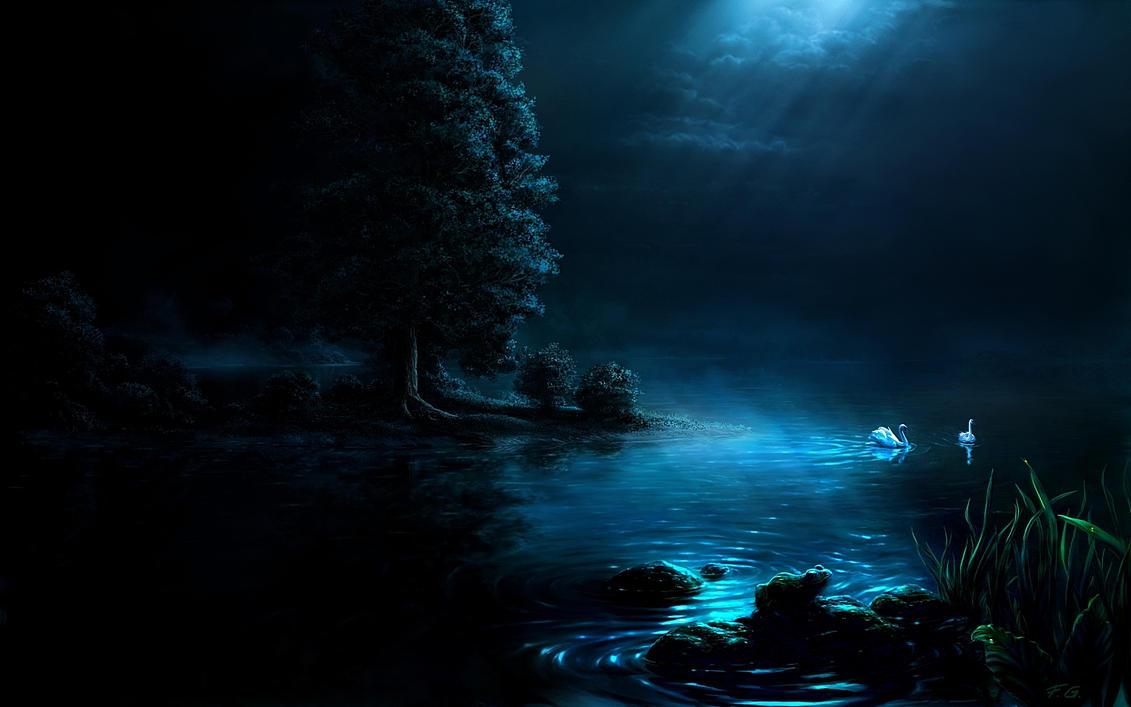 Swan night by Fel-X