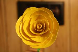 Yellow rose in Texas II by theshyfox