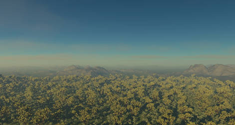 forest test2