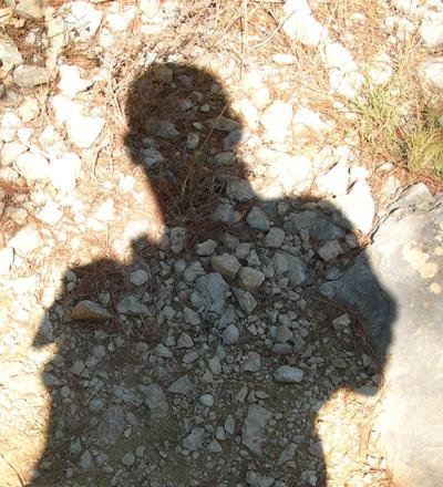 leseraphin's Profile Picture
