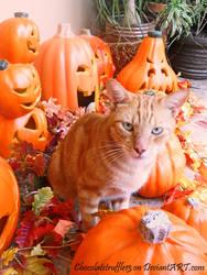 Pumpkin with Pumpkins by Anto-the-Artist