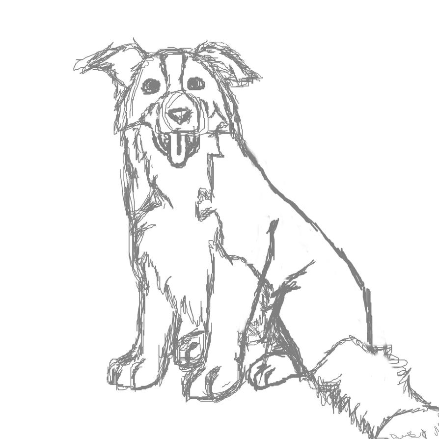rough collie coloring pages - photo#5