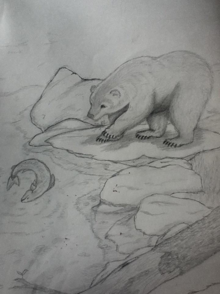 Bear and Salmon Stream by Nightishowl