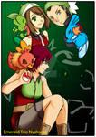 Emerald Trio Nuzlocke Cover