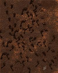 Pegadas-footprint by AlexCGarcia