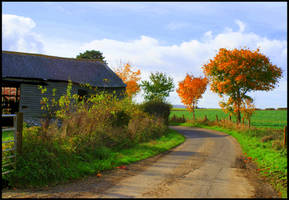 The Colours Of Autumn by Kaz-D