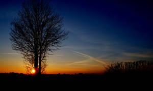 January Sunsets by Kaz-D