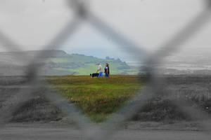 Through the Fence Lies Colour
