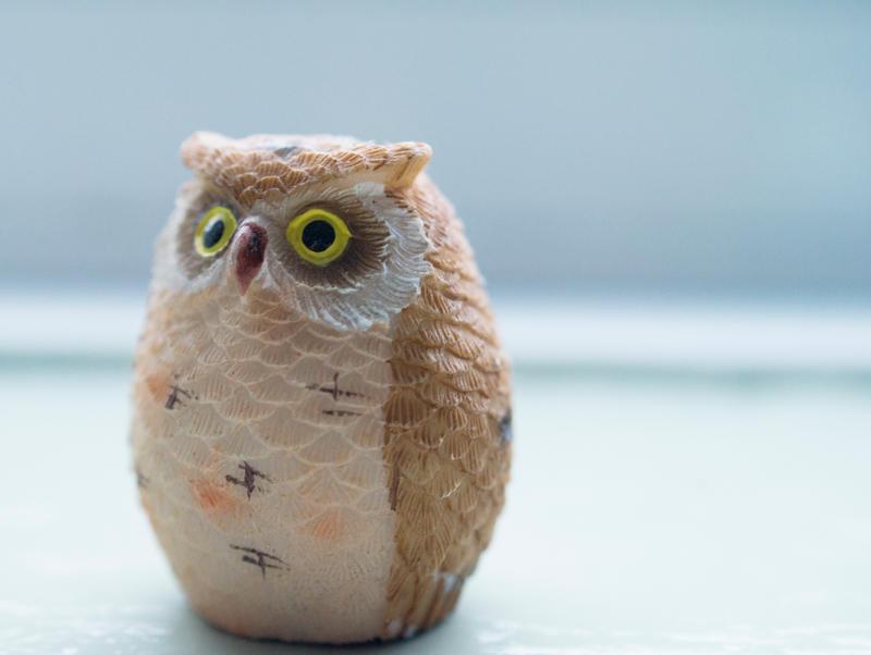 Day 319: Owls by Kaz-D