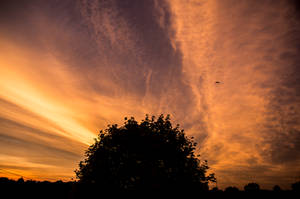 Julys Firey Skies