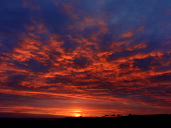 Rippled Sunsets