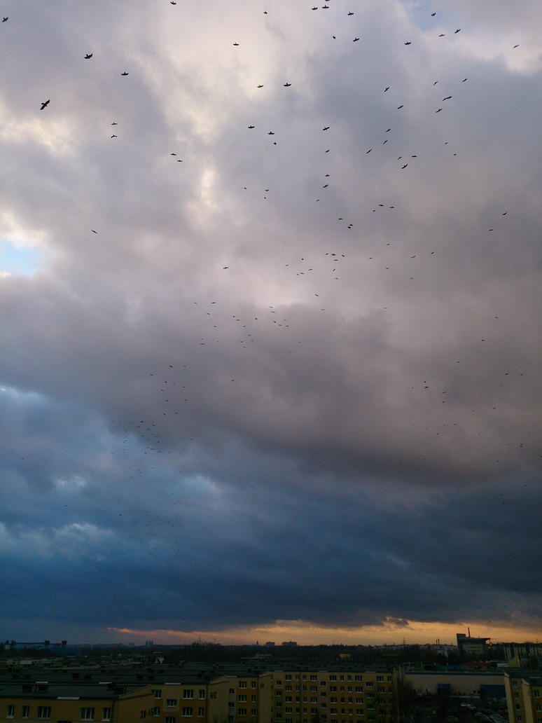 Raven's dance by Wilczyca-97