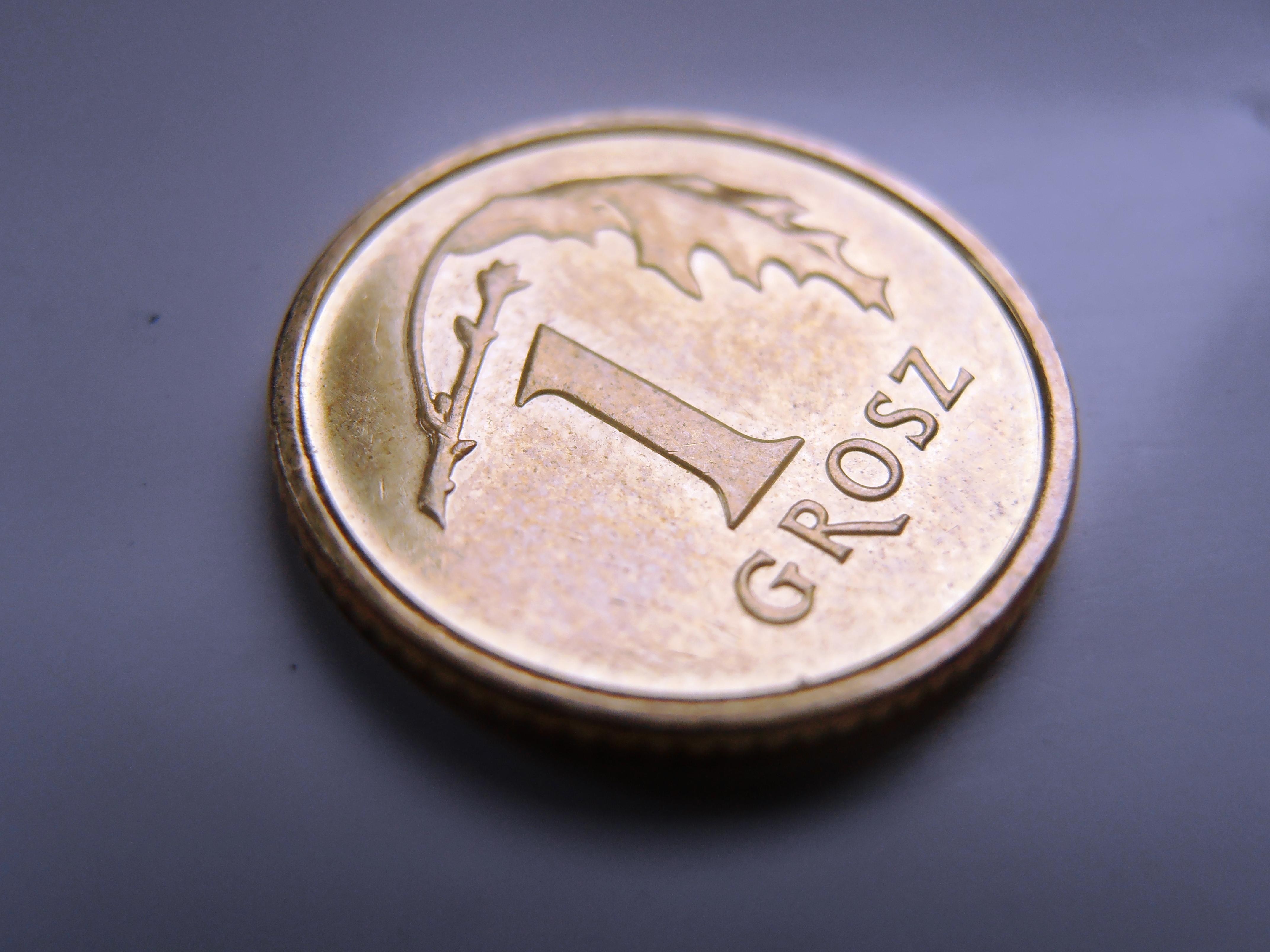 a lucky penny by Wilczyca-97
