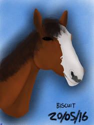 Biscuit - ForDillon