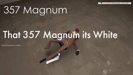 SW 357 Magnum Screenshot 1