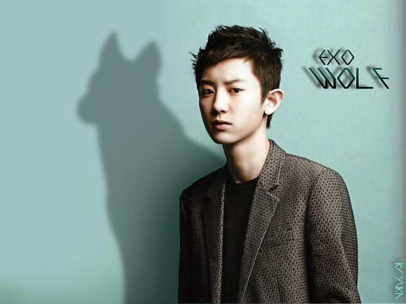 exo chanyeol wolf wallpaper by yuka55202565 d6coi64