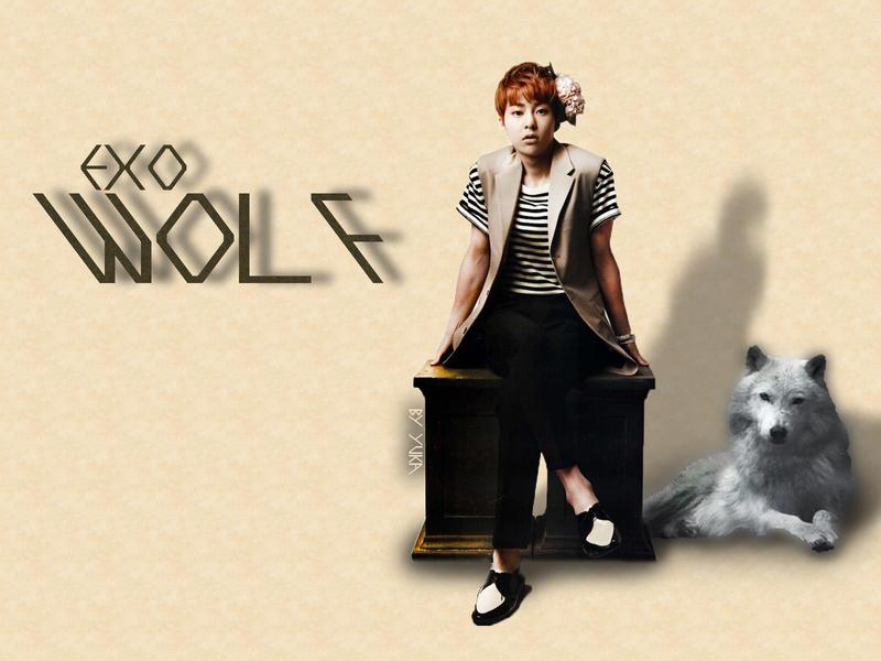 Xiumin 2013 Wolf EXO Xiumin Wolf Wallpaper by