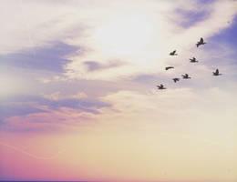 Sky Whisper by CocoLovesChanel