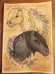 Shetland Stallions by WhimsicalWitch