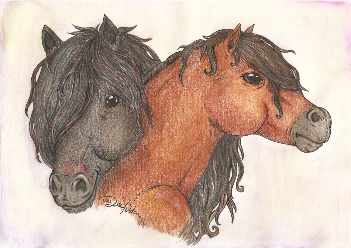 Shetland Ponies by WhimsicalWitch