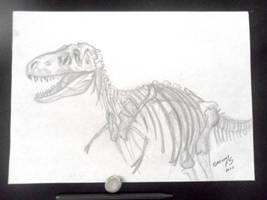 T rex   :) by GregoryFerreira