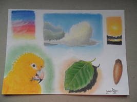 Colors Pastel by GregoryFerreira