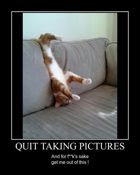 Quit Pics by sthlrd67