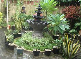 Green Garden by XaliberDeathlock