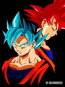 Goku fases Dios