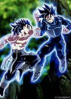 Commission 48 - Jzuyou vs Saiku by salvamakoto
