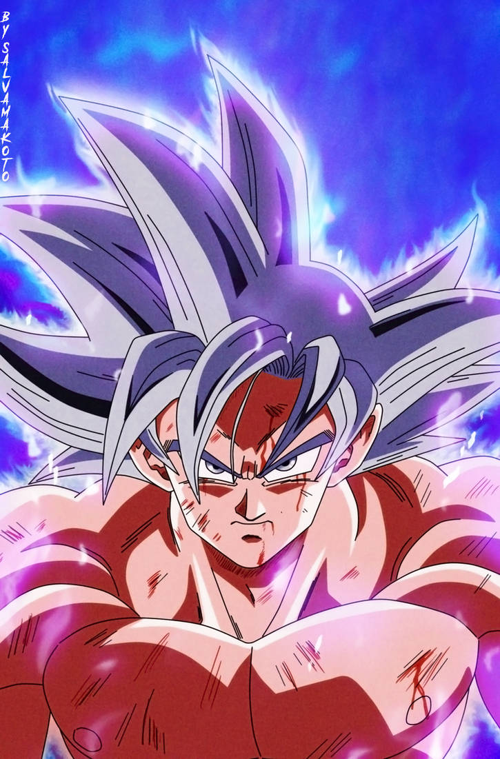 Mastered Ultra Instinct by salvamakoto