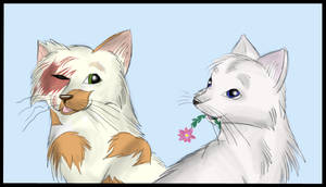 Brightheart and Cloudtail by Perlenmond