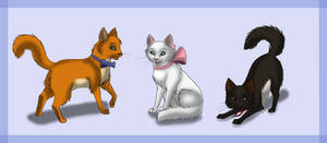 Aristocats-All grown up