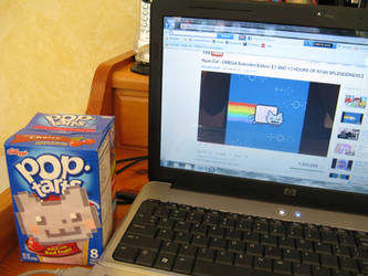 Nyan Cat Pop-tarts Box by Desu-Desu-Des