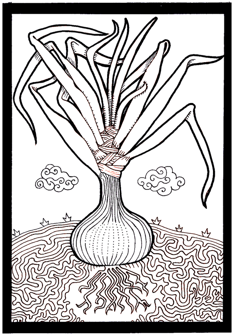Cacique cebolla by neokamatari