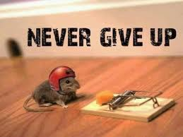 Never Give Up! by Proud2BMe1936
