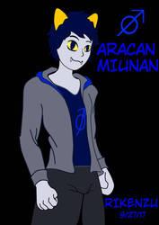 Aracan Miunan (OC commission) by Rikenzu