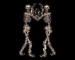 Skeleton Vision 2