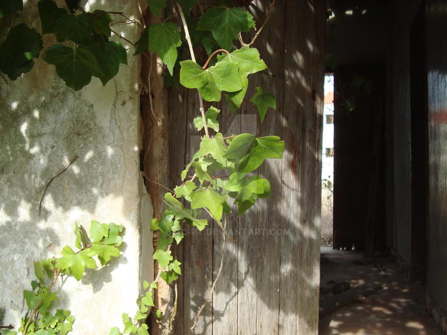 Knock on the Door by BiaC-PT