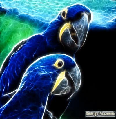 Fractalius: Blue macaw by rodrigopessanha