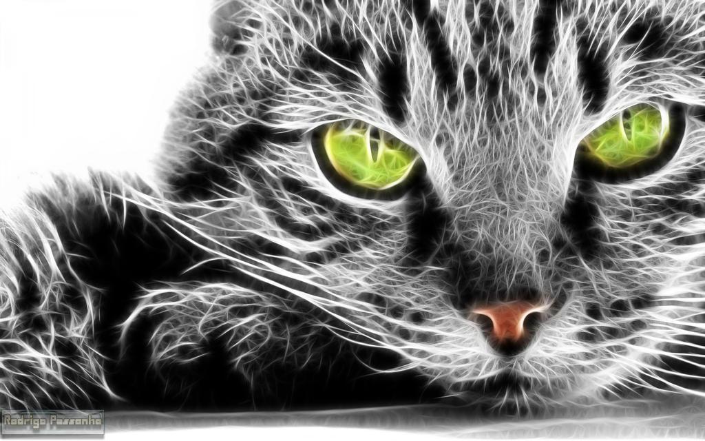 Fractalius: Cat by rodrigopessanha