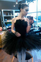 Black Swan by gwiishie