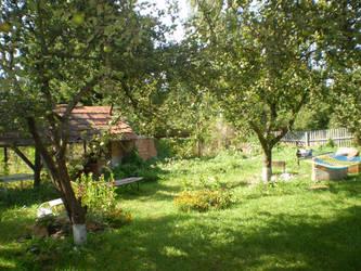 My garden by Elanka
