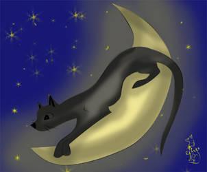 A cat on the moon by Elanka