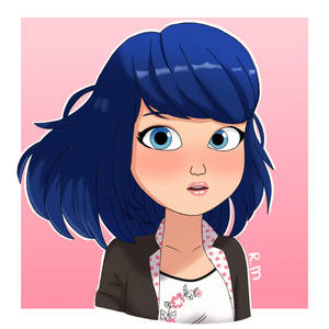 Let your Hair down, Marinette