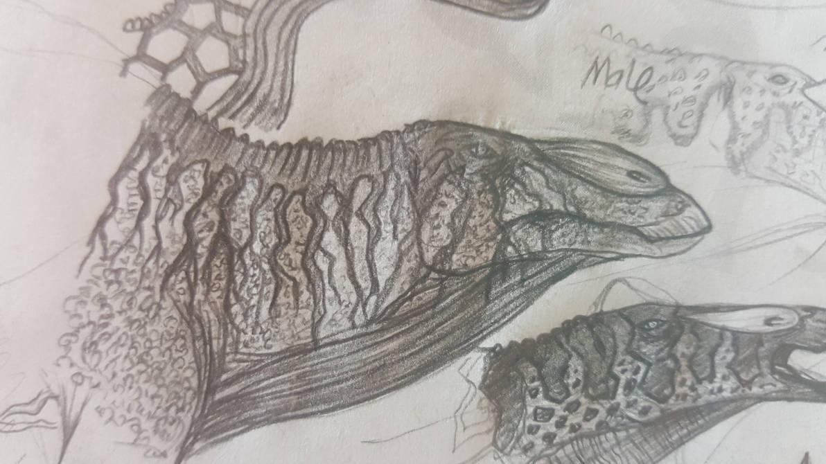 Random sketches giant duck boy by hypoem87