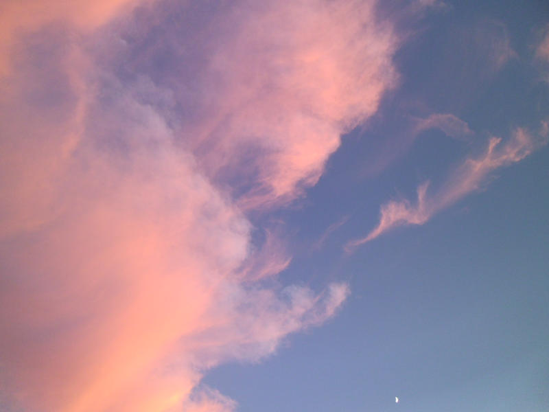 Photo: Cotton Candy by Audrykuu