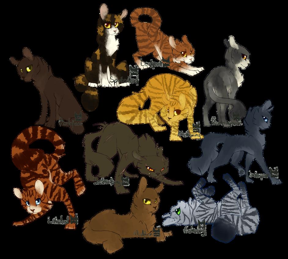 Medicine Cats By RevioLATE On DeviantArt